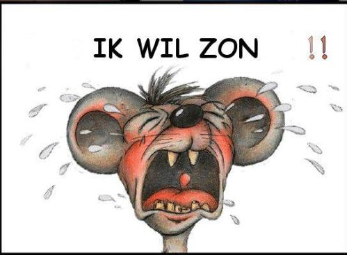 IK WIL ZON